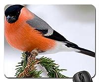 Bullfinch。鳥、マウスパッド(マウスパッド)