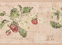"""ビンテージホワイト花Strawberryサーモンピンク壁紙ボーダーレトロデザイン、ロール15' x 7"""""""