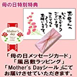 カーネーションと栗きんとん 栗柿 大福スイーツセット 風呂敷包み 花とスイーツ 母の日ギフト