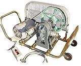 ミナトワークス 大型ギヤーポンプ セット 《3点遠隔操作スイッチ付き》 (32Φ/三相200V/2馬力モーター付き)