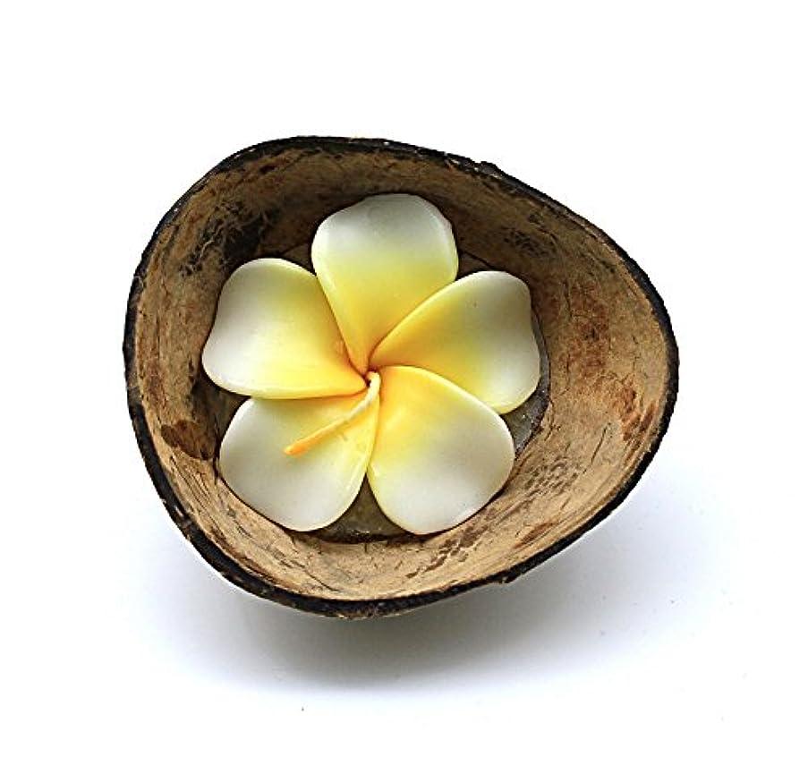 ビバドット代表してハワイルアウパーティーレアルココナッツハーフシェルキャンドルホルダー花プルメイラ香りのキャンドルホワイト