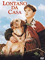 Lontano Da Casa [Italian Edition]