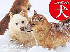 2020年カレンダー ニッポンの犬 ([カレンダー])