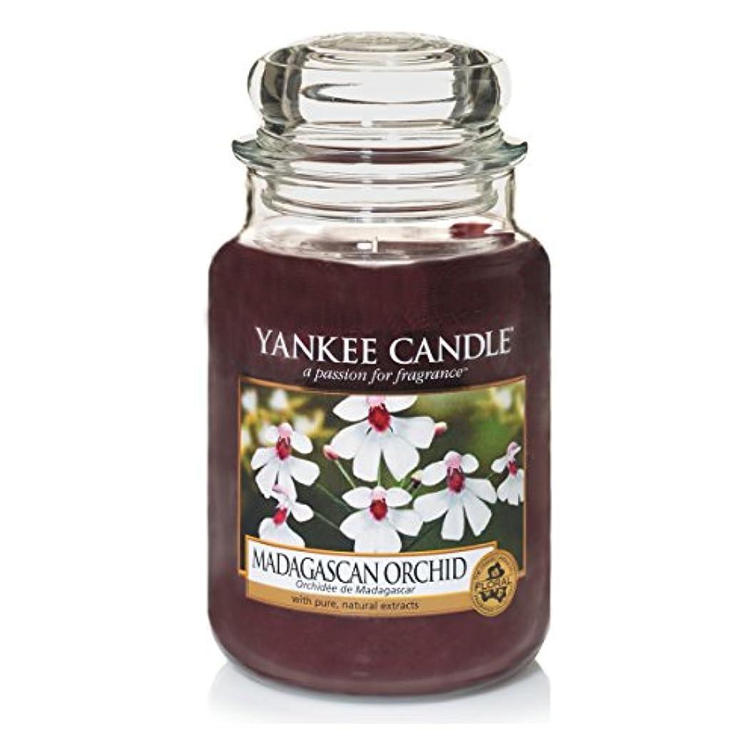 取り囲む激しい取得Yankee Candle Large Jar Candle, Madagascan Orchid by Yankee Candle