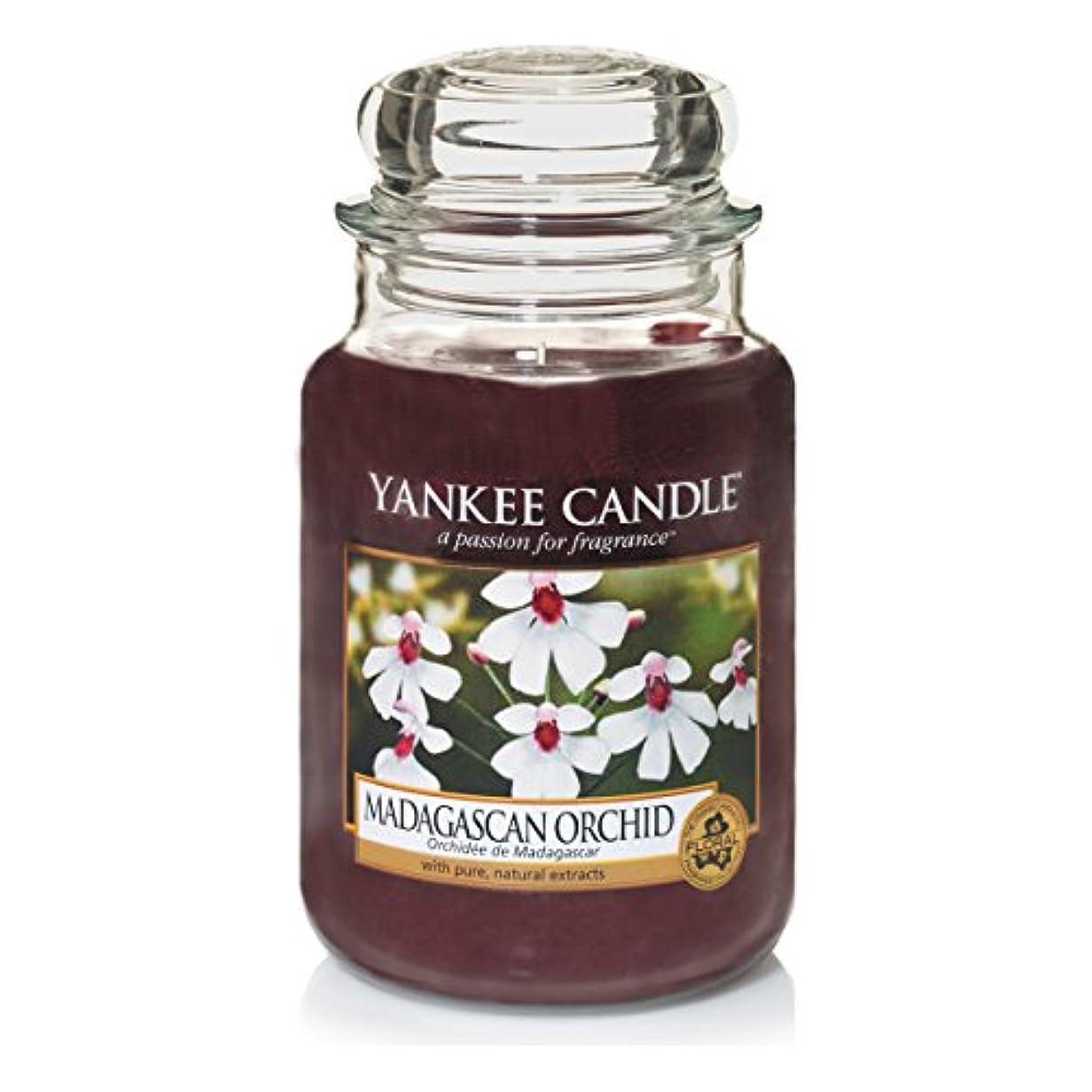 値媒染剤認識Yankee Candle Large Jar Candle, Madagascan Orchid by Yankee Candle