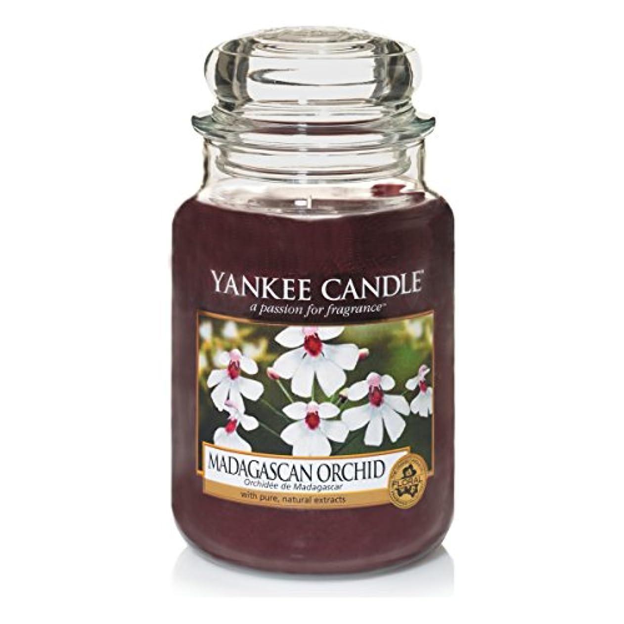 ボイコットもちろん勝利したYankee Candle Large Jar Candle, Madagascan Orchid by Yankee Candle