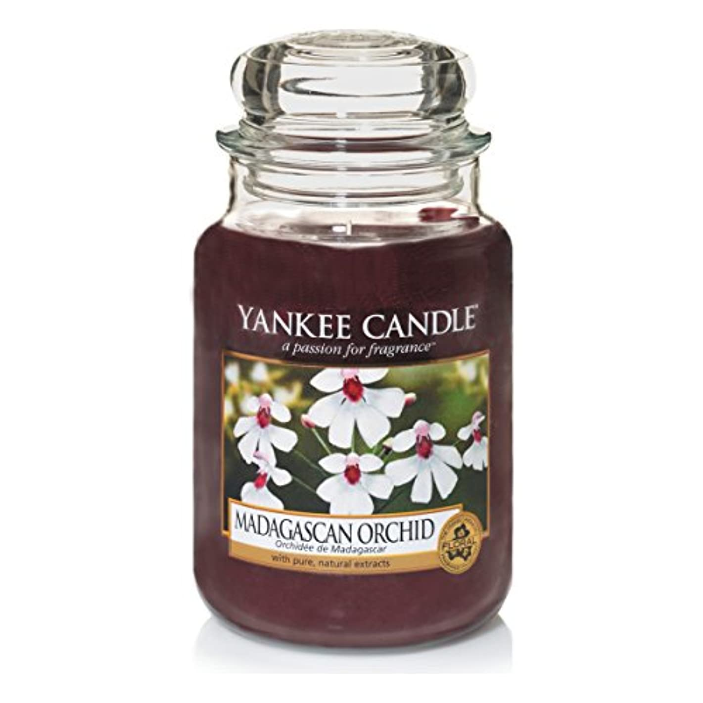 繕う硬化するコンプリートYankee Candle Large Jar Candle, Madagascan Orchid by Yankee Candle