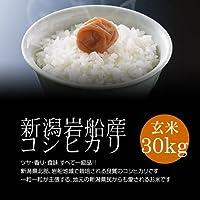 【法事のお返し・香典返し】岩船産コシヒカリ 玄米 30kg 新米/モチモチ食感が人気の新潟米