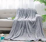 sea-maid マイクロファイバー 毛布 軽量 ふんわり 柔らか シングル(140×200cm) ノンシリコン/健康/通気/吸湿/静電気防止/洗濯可能(グレー)