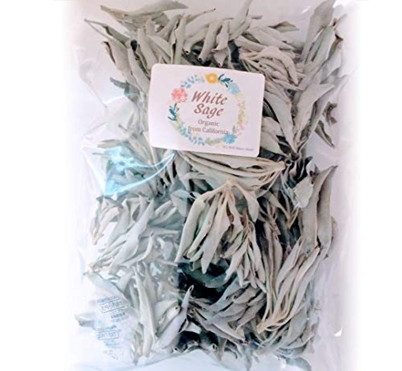 交換憂鬱な仮定ホワイトセージ 無農薬 浄化用 100g 手で厳選したクラスタータイプ カルフォルニア産 直輸入