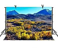 自然写真の背景幕ブルーSky Mountain Nature Landscape背景の結婚やキッズ子供誕生日Backdrop 9X 6ft (2.7mx1.8m) gyst498