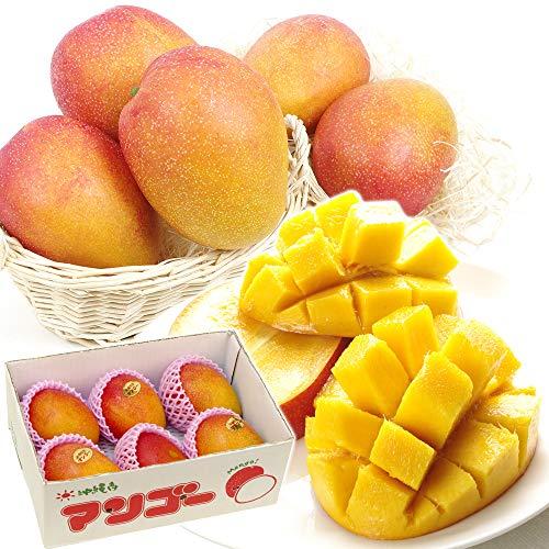 国華園 沖縄産 ご家庭用 マンゴー 約2kg