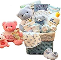 Baby Boy Gift: Sweet Baby of Mine New Baby Basket -Boy by Epicurean