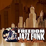 "D.L Presents FREEDOM JAZZ FUNK ""Mellow Storm"""