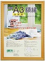 ナカバヤシ 賞状額縁 金ケシ(樹脂製) 賞状大賞判 フ-KWP-41 N