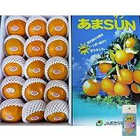 沖縄県産 みかん あまSUN (JA特秀品規格) 化粧箱3kg詰め 星の砂おまけ付き