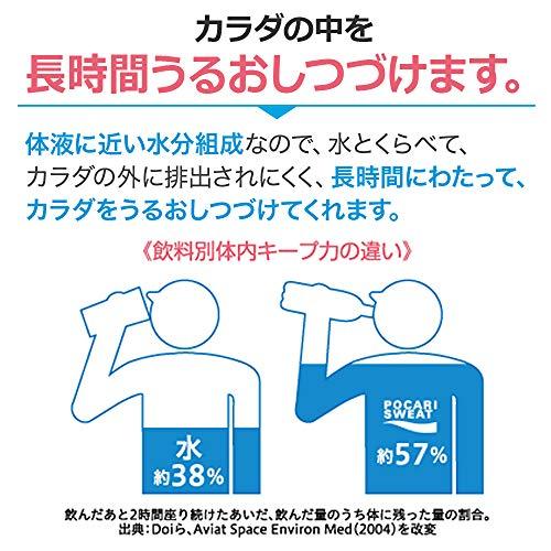 『大塚製薬 ポカリスエット パウダー (74g)1L用×5袋』の3枚目の画像
