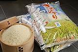 キヌヒカリ 環境こだわり米 白米5kg×2袋【平成28年度:滋賀県産】