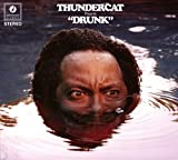Thundercat<br />Drunk