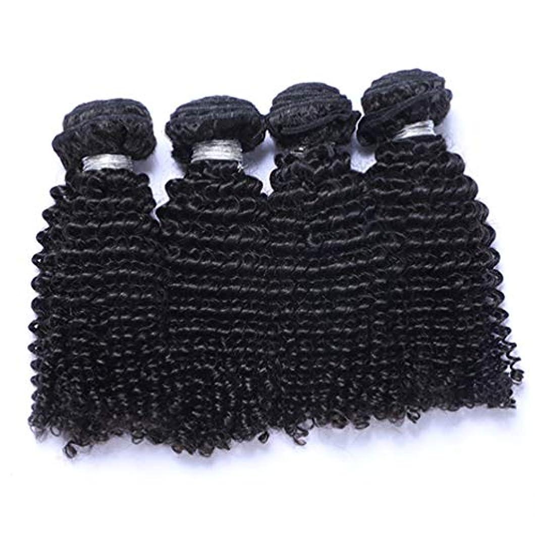 一目ウェイターパラナ川髪織り未処理ブラジルディープカーリーヘアバンドル本物の人間の髪バンドルバージンブラジル髪バンドル1ピース/パックナチュラルカラー