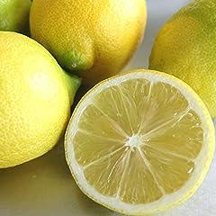 【国産・防腐剤不使用・ノーワックス】広島県 大長産レモン / 瀬戸内レモン(規格外) 5kg