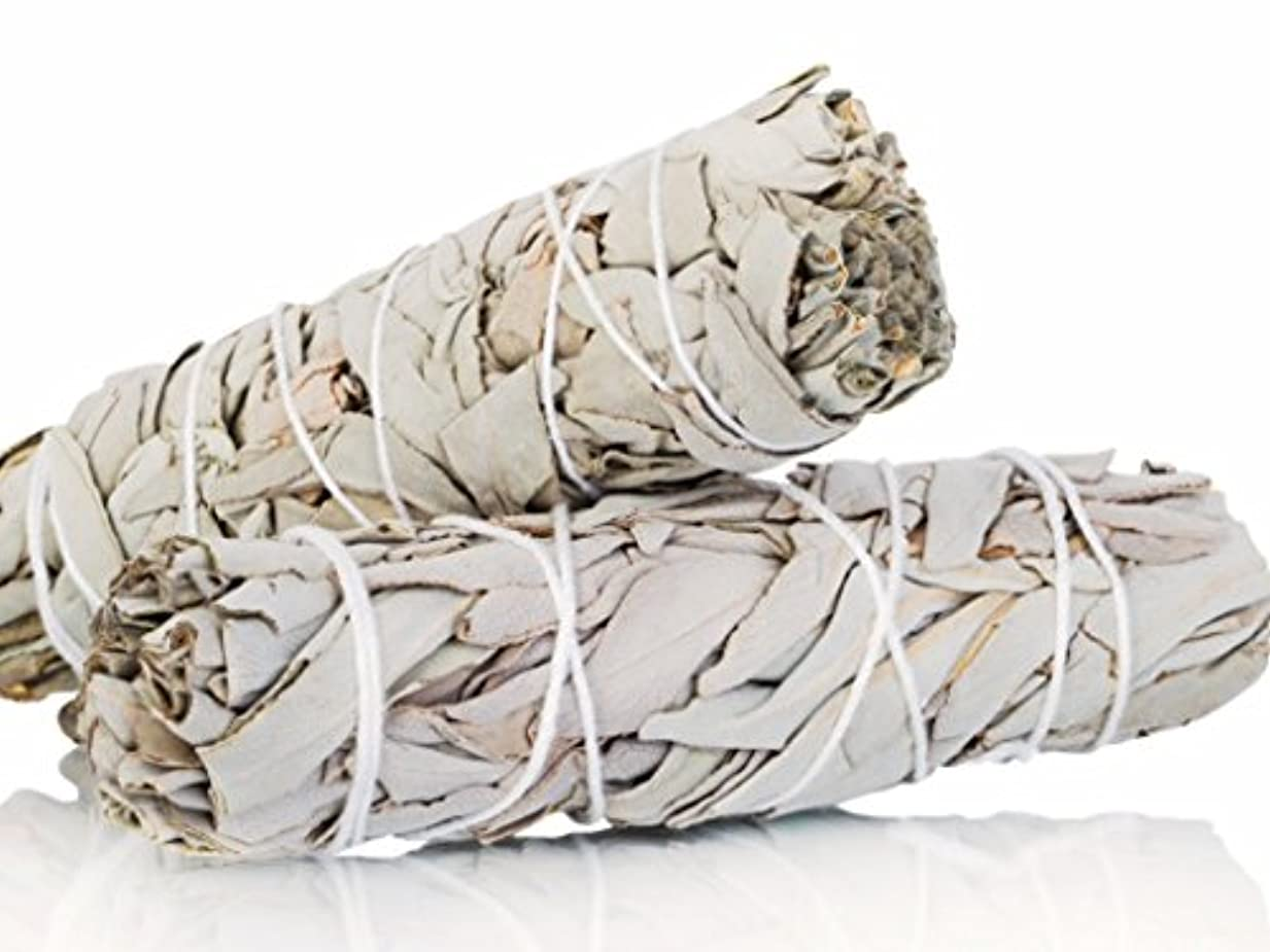 うがい薬甘美な苛性White Sage Smudge Sticks 10cm