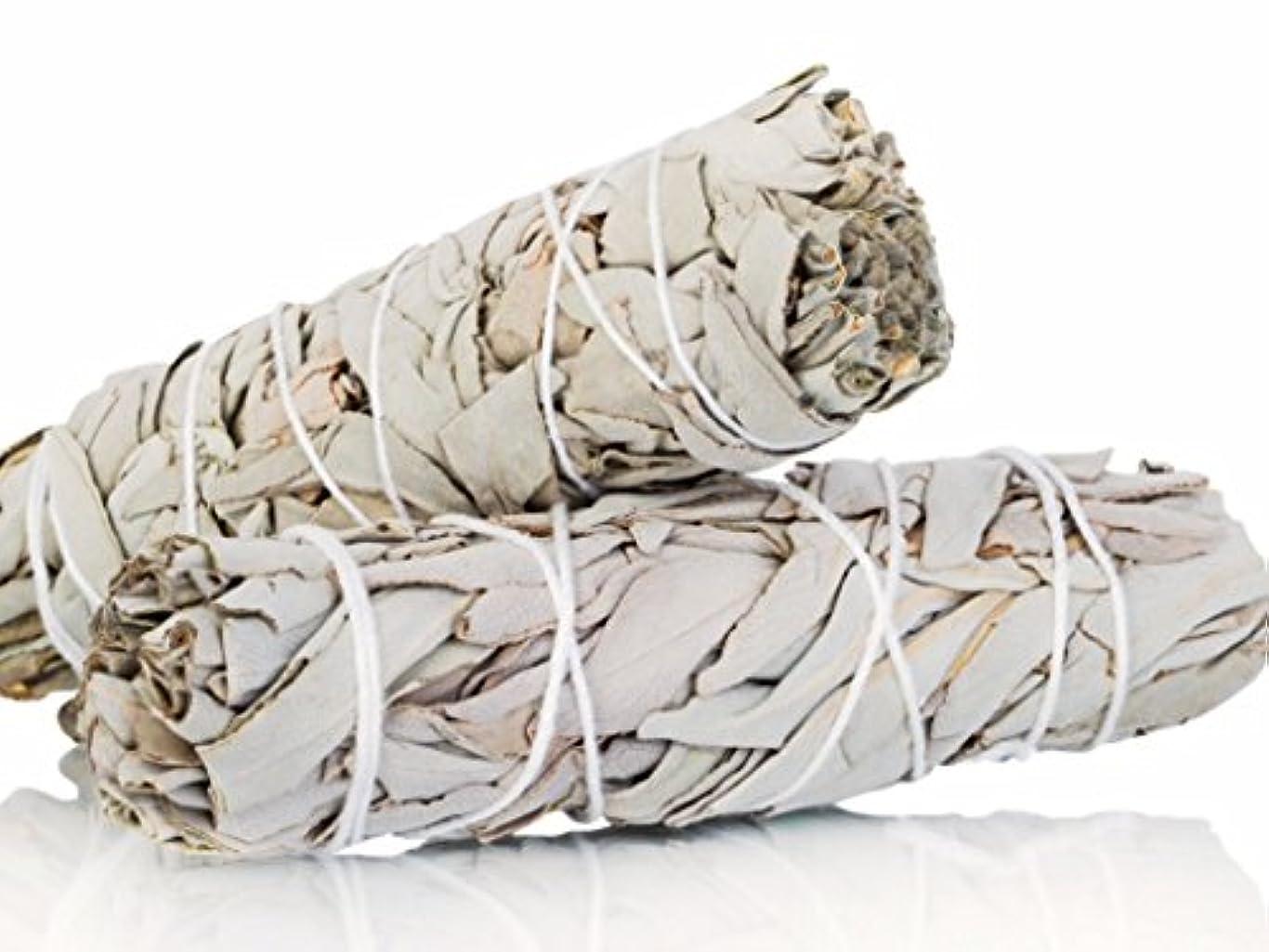 反抗湖木製White Sage Smudge Sticks 10cm