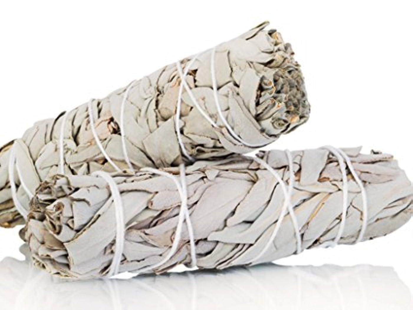 インシデント三番滞在White Sage Smudge Sticks 10cm