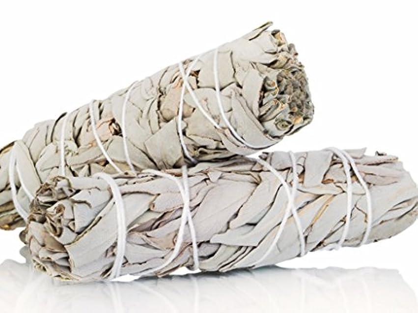 安価な麻痺初心者White Sage Smudge Sticks 10cm