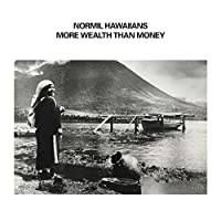 MORE WEALTH THAN MONEY [2LP] [Analog]