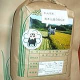 玄米 安心 れんげ米 熊本 2kg 減農薬 無化学肥料 農家直送 28年産