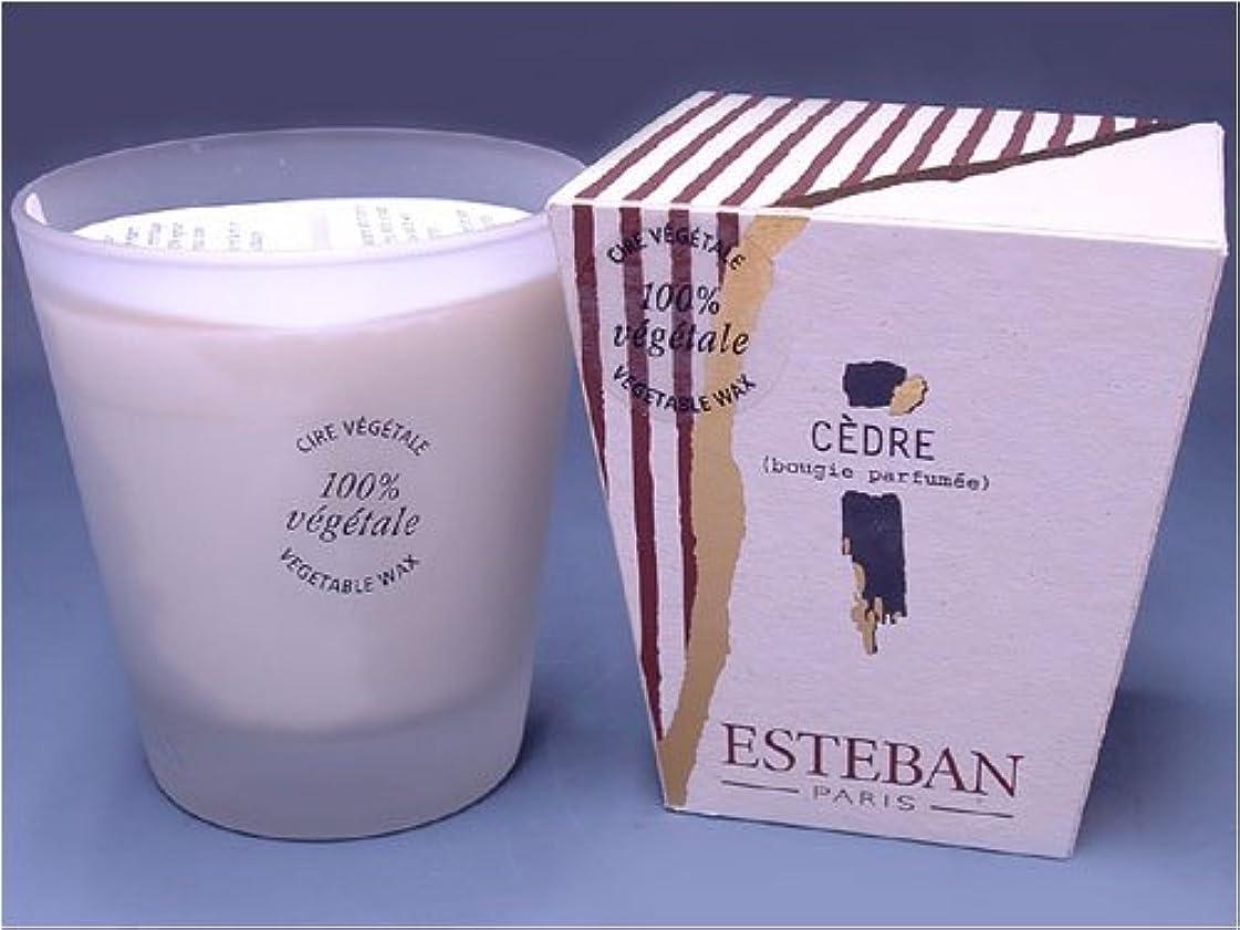 酸素男らしい主権者ESTEBAN(エステバン) creation Miller et Bertaux フロストキャンドル 480g 「セダー -CEDRE-」 4902125534063