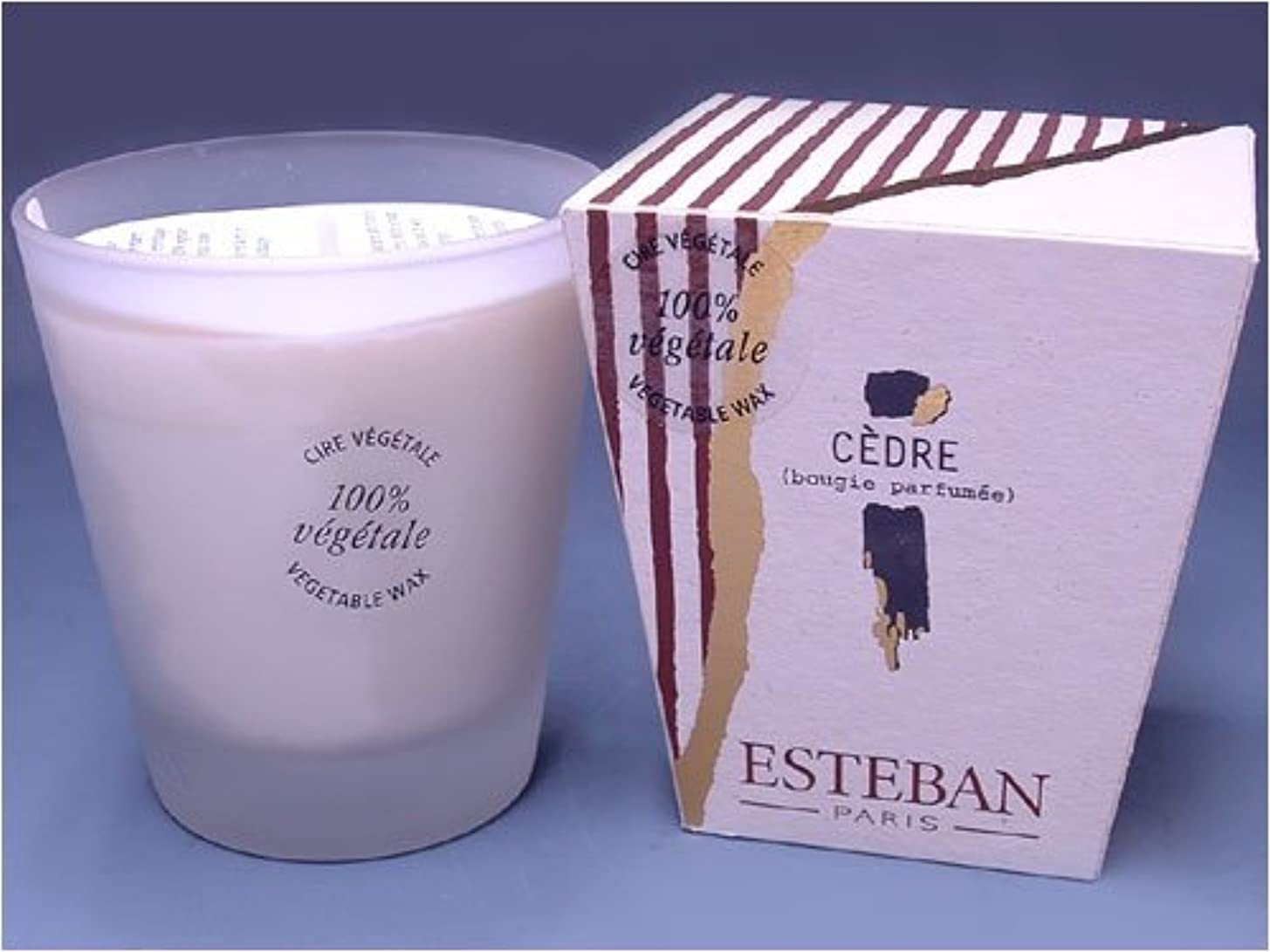 太鼓腹約束するランプESTEBAN(エステバン) creation Miller et Bertaux フロストキャンドル 480g 「セダー -CEDRE-」 4902125534063