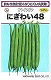 渡辺採種場 サヤインゲン にぎわい48 約200粒