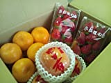 九州産 新鮮果物 3品目 詰合せセット