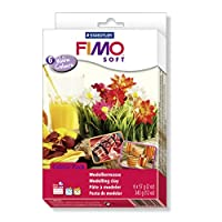 STAEDTLER Fimo Soft 8023 03 Kit 6 Assorted Blocks - 57g60ml