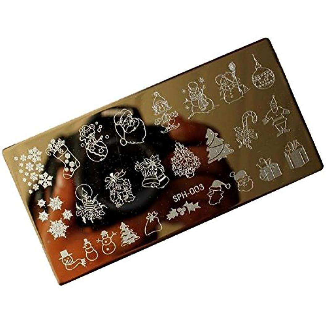 令状支店ケーブル[ルテンズ] スタンピングプレートセット 花柄 クリスマス ネイルプレート ネイルアートツール ネイルプレート ネイルスタンパー ネイルスタンプ スタンプネイル ネイルデザイン用品