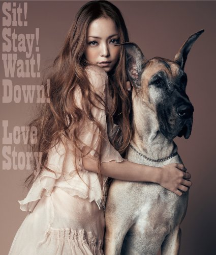 Sit! Stay! Wait! Down!/Love Story(DVD付)