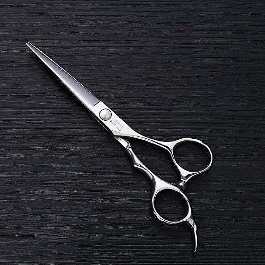 真夜中旅ヒット5.5インチ理髪師プロのヘアカットフラットせん断高品質理髪ツール ヘアケア (色 : Silver)