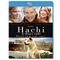 HACHI-DOGS TALE