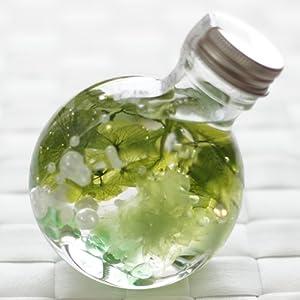 ハーバリウム 丸ボトル (カーネーション ミント)の関連商品5