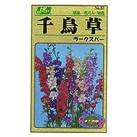 カネコ種苗 園芸・種 KS100シリーズ 千鳥草 ラークスパー 草花100 061