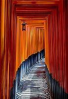 (レアッコ) Laeaccoビニール背景幕 写真背景 神道の神社の宗教的な小路 京都 ミステリアスなアートデザイン 大人 子供用背景 ビデオ 写真スタジオ小道具 高さ2.2m x 幅1.5m背景画