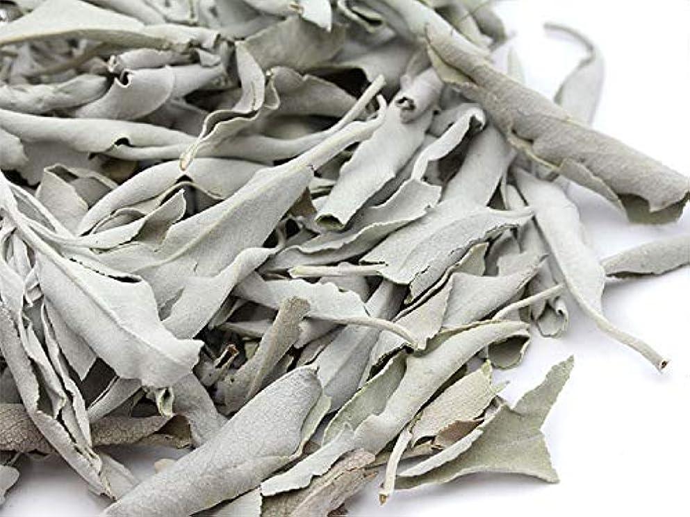 余剰実質的にまた高品質 ホワイトセージ カリフォルニア産 浄化パワーストーン30g