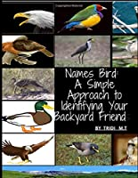 Names Bird: A Simple Approach to Identifying Your Backyard Friend