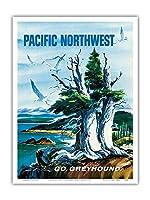 太平洋岸北西部 - グレイハウンド - ビンテージな世界旅行のポスター によって作成された S.フレミング c.1958 - アートポスター - 23cm x 31cm