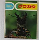 クワガタ (カラー自然シリーズ (3))