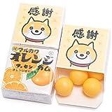 『 感謝 柴犬 』 感謝 退職 挨拶 お菓子 ありがとう メッセージ マルカワガム 24個入 (オレンジ)