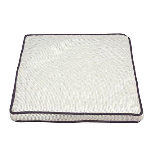 アイリスオーヤマ エアリークッション 高反発 通気性 洗える 抗菌防臭 ホワイト CAR-4343