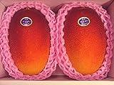 《大好評》 宮崎産完熟マンゴー 赤秀 2玉 およそ900g 化粧箱入り